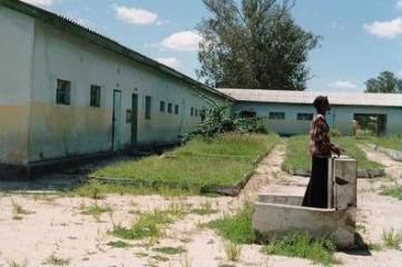Shamba-schule-240