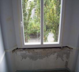 Fenster-250